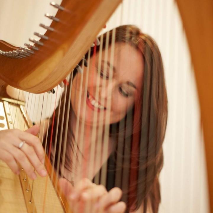 sharon carroll wedding harpist